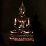 6518_01 Sm Lotus Buddha