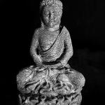 7945_01 Buddah Lotus Stone